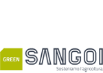 sangoi-newsletter